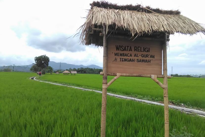 Desa Wisata Halal Setanggor, Lombok Tengah. Pengunjung bisa merasakan sensasi mengaji di tengah sawah.