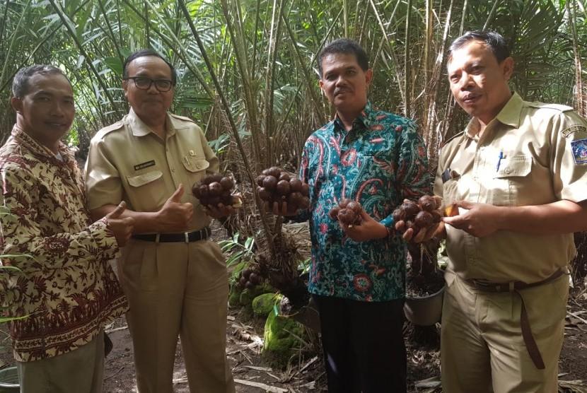 Direktur Jenderal Hortikultura, Suwandi (kedua dari kanan) saat mengunjungi sentra produksi salak yakni Kecamatan Tempel, Sleman, Senin (11/2).