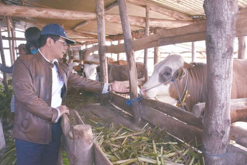 Direktur Jenderal Peternakan dan Kesehatan Hewan (Dirjen PKH) I Ketut Diarmita saat melakukan kunjungan kerja ke NTB, Jumat (21/9)