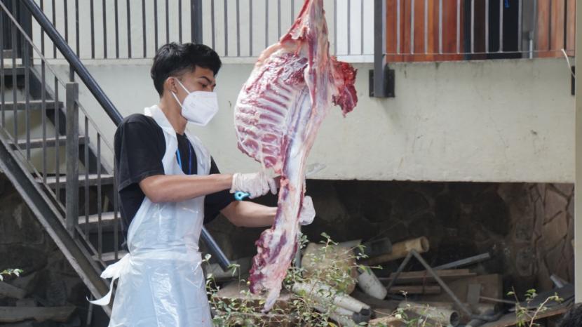 Direktur Rumah Amal Salman, Muhammad Kamal Muzakki, mengatakan, tahun ini lebih dari 1.300 domba, 62 sapi, dan 2 unta yang terhimpun.