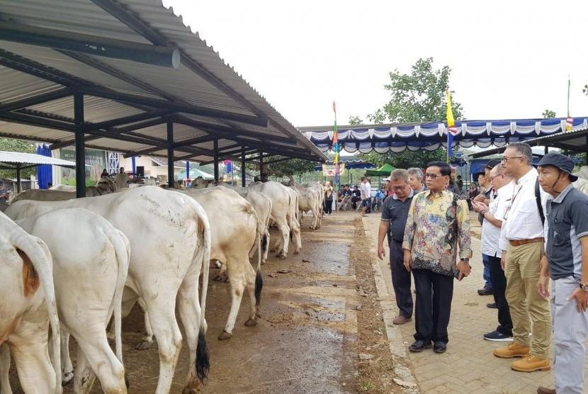 Dirjen Peternakan dan Kesehatan Hewan I Ketut Diarmita meninjau peternakan sapi