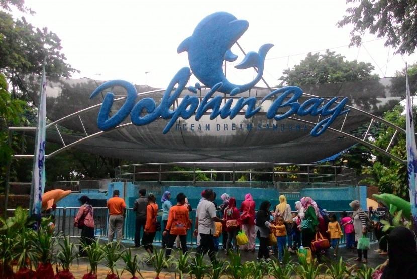 Dolphin Bay Ancol
