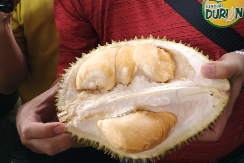 Durian Super Tembaga Bangka.