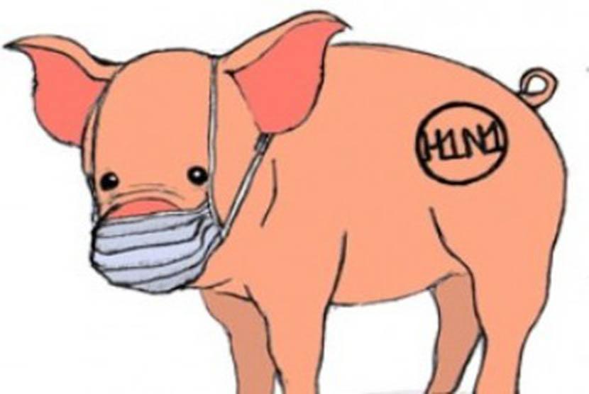 Flu Babi (Ilustrasi)