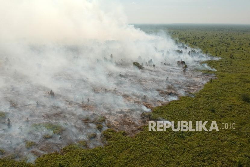 Foto udara kebakaran lahan gambut di Kumpeh Ulu, Muarojambi, Jambi.