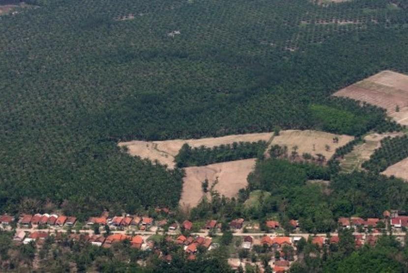 Foto udara suasana lahan perkebunan kelapa sawit dikawasan Bandar Lampung, Selasa (15/12).