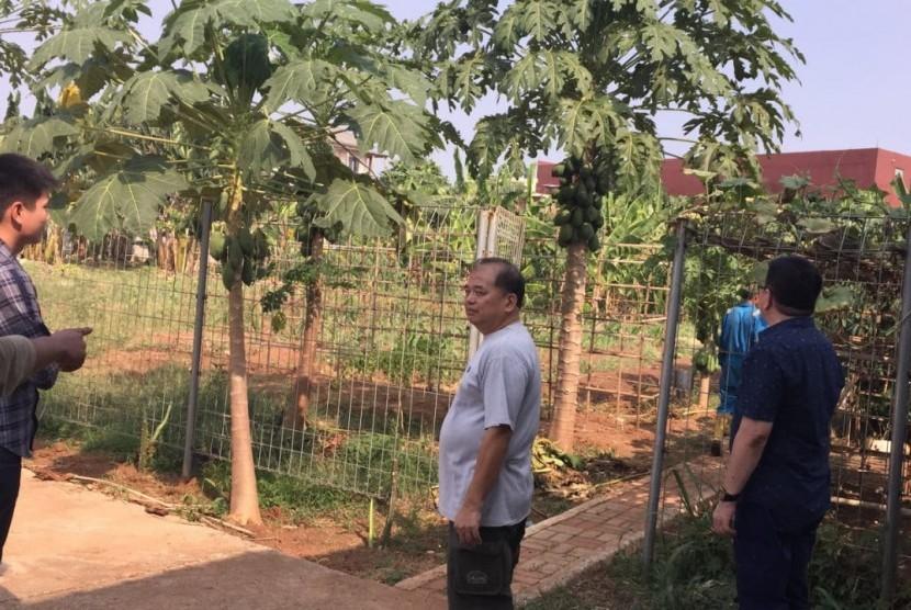 Generasi muda mengarahkan petani menggunakan pupuk organik untuk menjaga unsur hara dalam tanah
