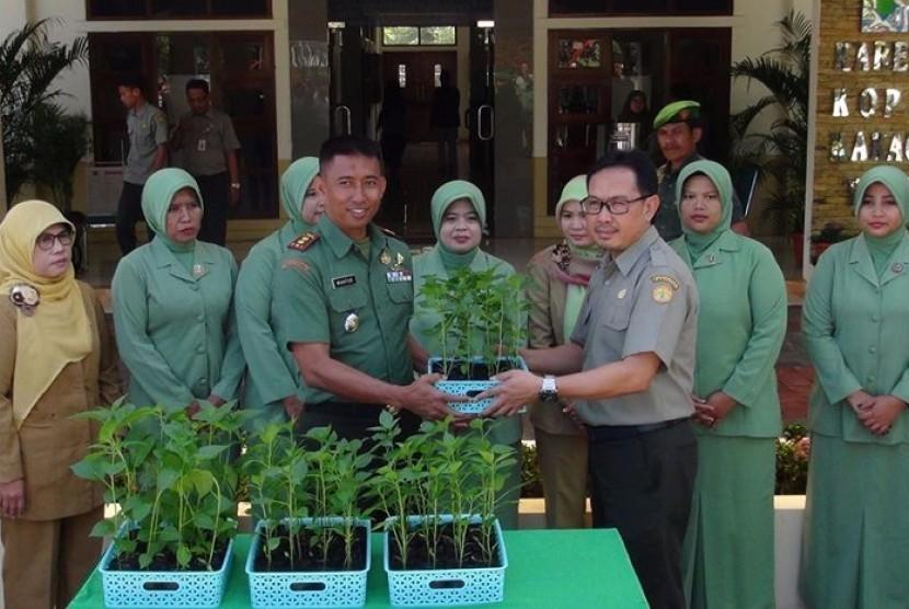 Gertam Cabai di Sukabumi