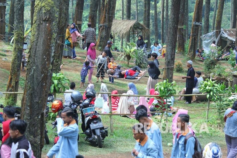 H 2 Lebaran Lokasi Wisata Hutan Pinus Cikole Lembang Ramai