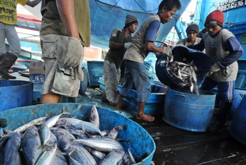 Hasil Tangkapan Ikan Nelayan