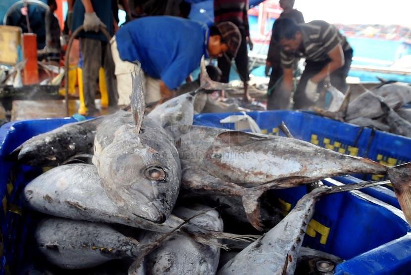 Hasil tangkapan nelayan di pelabuhan Muara Baru, Jakarta.