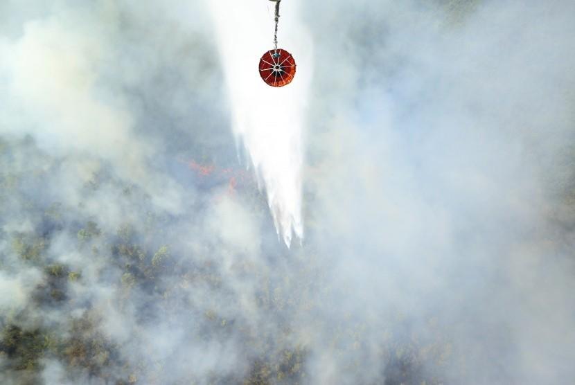 Helikopter pemadaman kebakaran hutan (ilustrasi)