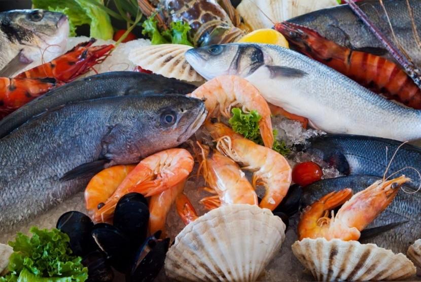 Hewan laut memiliki kemungkinan terbesar terpapar mikroplastik akibat sampah plastik yang dibuang sembarangan. (ilustrasi)