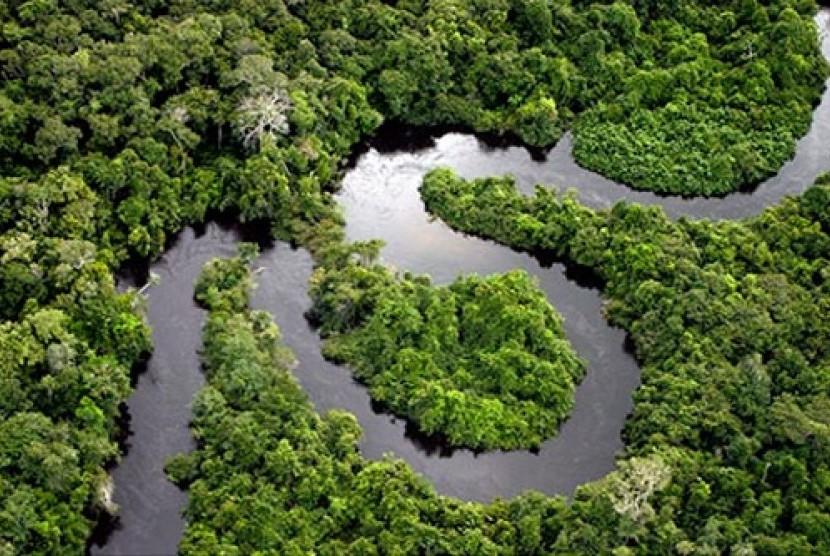 Hutan Amazon