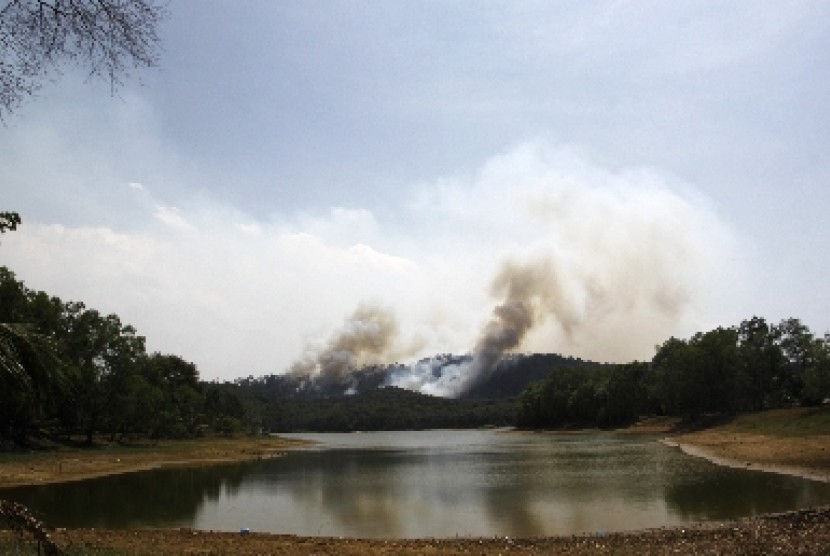 Hutan di bukit Sei Harapan, Sekupang, Batam menjadi daerah tangkapan air (water cacthmen area) bagi dam Sei Harapan.
