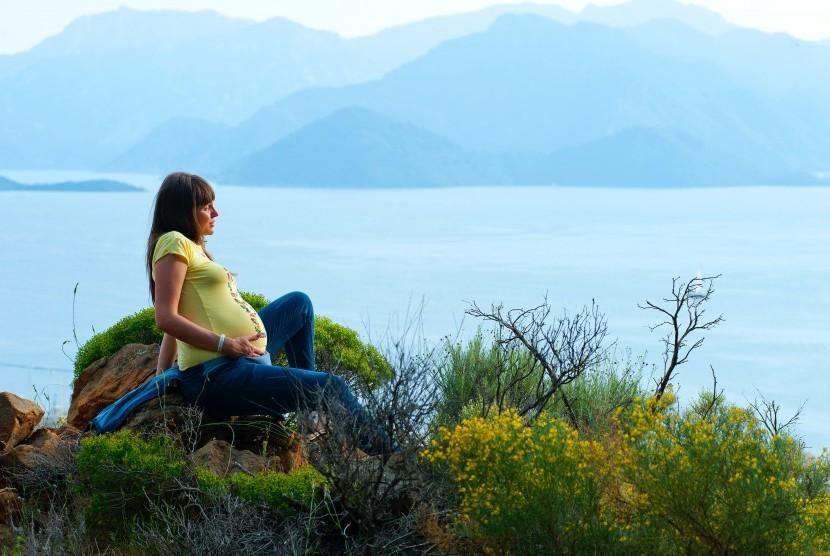 Tip Traveling Yang Aman Untuk Ibu Hamil 1 Republika Online
