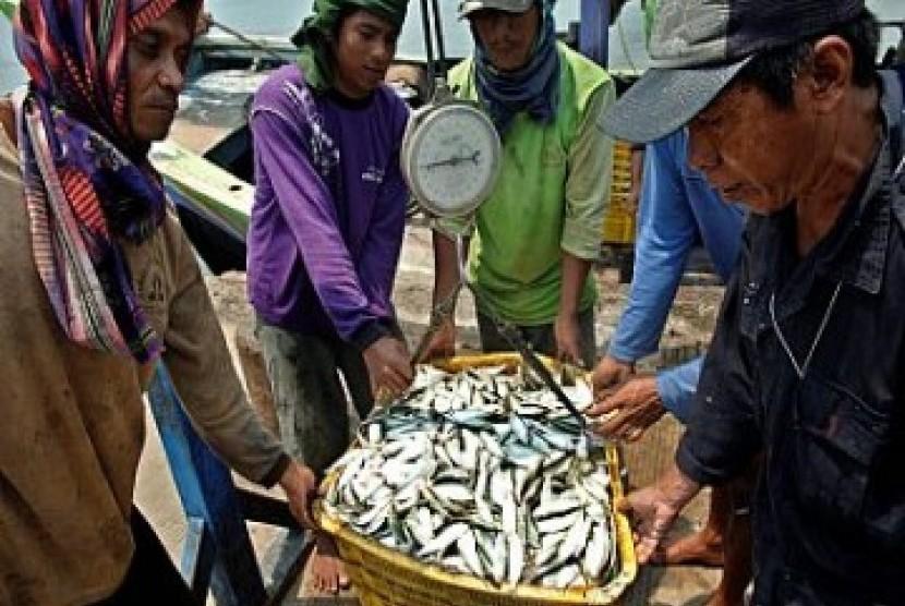Ikan hasil tangkapan nelayan