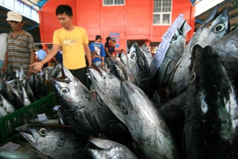 Ikan laut (ilustrasi)
