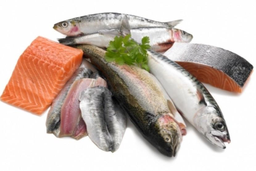 Ikan segar/ilustrasi