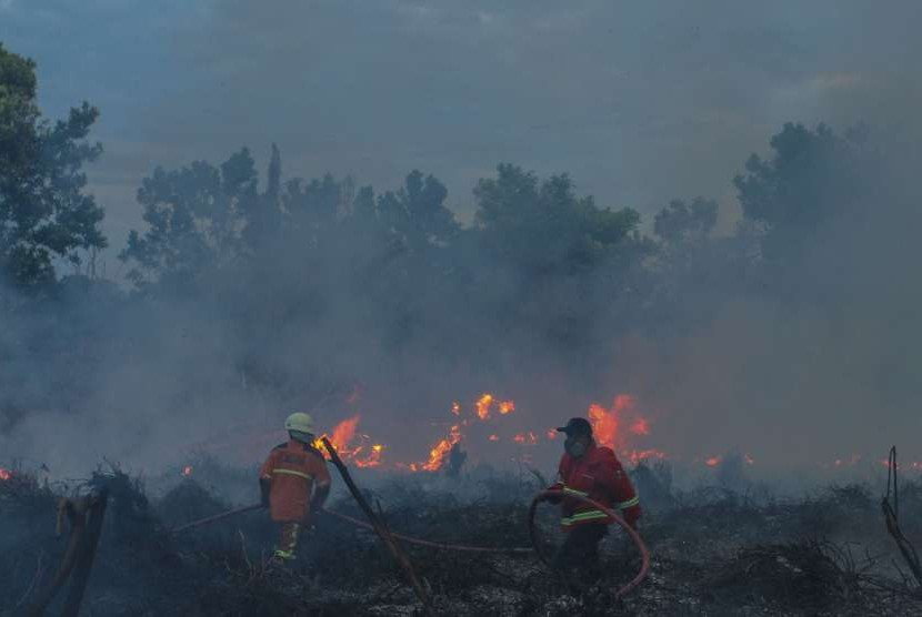 Ilustrasi kebakaran lahan.