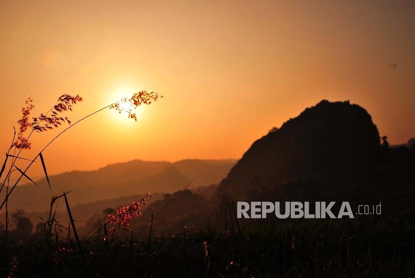 ilustrasi siluet ilalang bukit dan sunrise