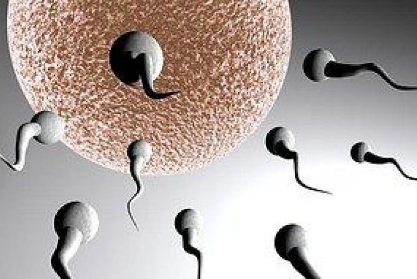 beragam faktor yang dapat memicu terjadinya infertilitas atau ketidaksuburan (ilustrasi).