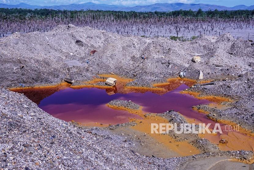 Kawasan kebun sagu yang terkena limbah merkuri di Gunung Botak, Pulau Buru, Maluku, Rabu (28/11/2018).