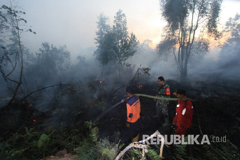 Forest and land fires in West Dumai, Dumai city, Riau Province, Tuesday (Feb 12).