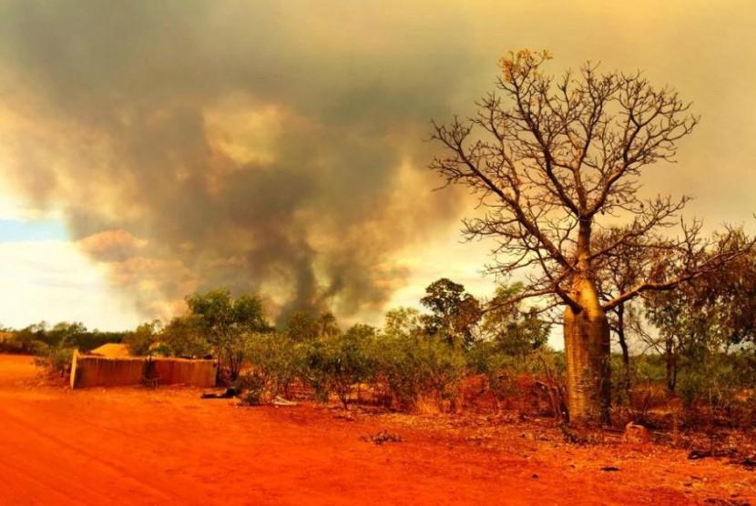 Kebakaran hutan dan semak di Australia.