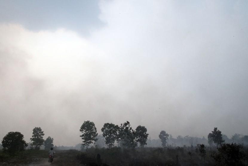 kebakaran hutan (ilustrasi)