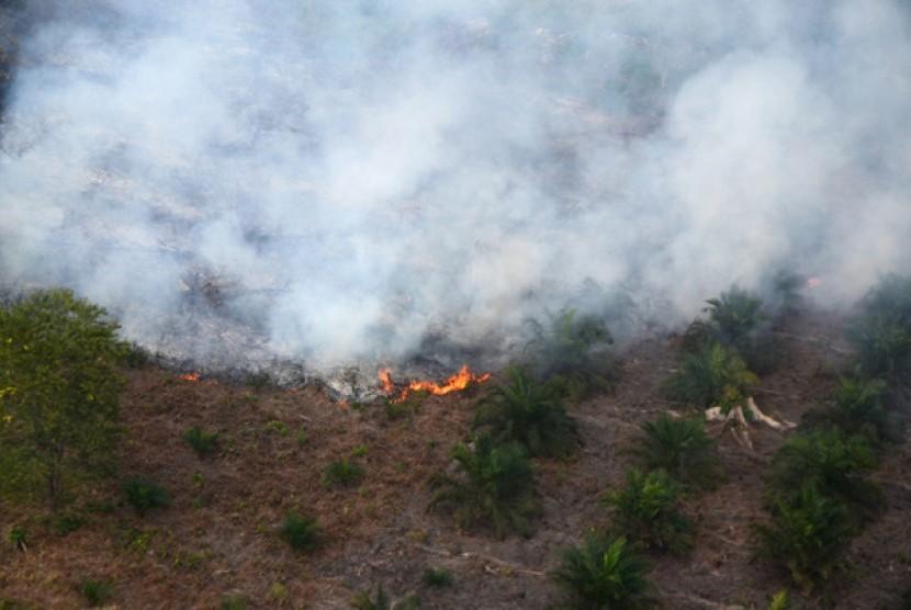 Kebakaran terjadi lahan kebun kelapa sawit terlihat dari udara di Kabupaten Pelalawan, Riau, Kamis (27/6). Kebakaran lahan dan hutan di Provinsi Riau masih terjadi setelah sepekan tanggap darurat asap diberlakukan.