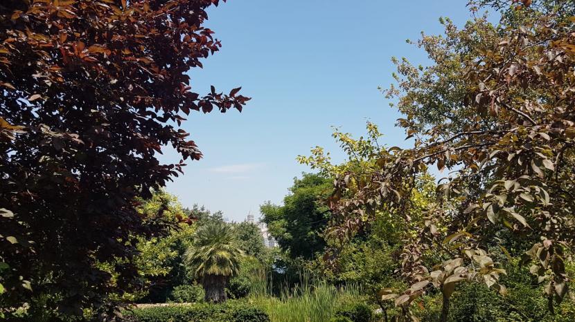 Kebun Raya Alfred Heilbronn Istanbul.