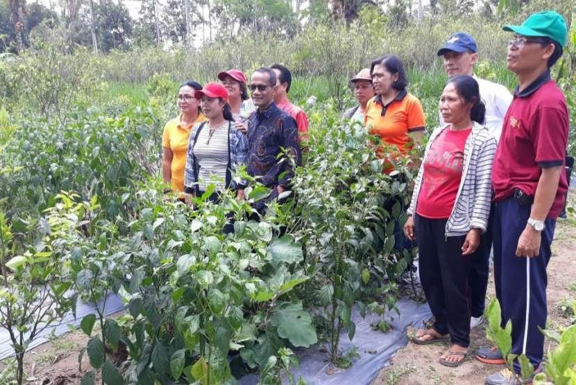 Kepala Badan Ketahanan Pangan (BKP) Kementerian Pertanian (Kementan) Agung Hendriadi saat mengunjungi Kawasan Mandiri Pangan (KMP) di Kabupaten Gianyar, Bali, Jum'at (21/9)