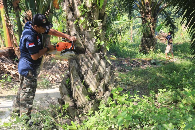 Industri kelapa sawit hingga saat ini masih menjadi industri paling menjanjikan bagi perekonomian nasional. Termasuk untuk pembangunan ekonomi di kawasan Indonesia Timur.