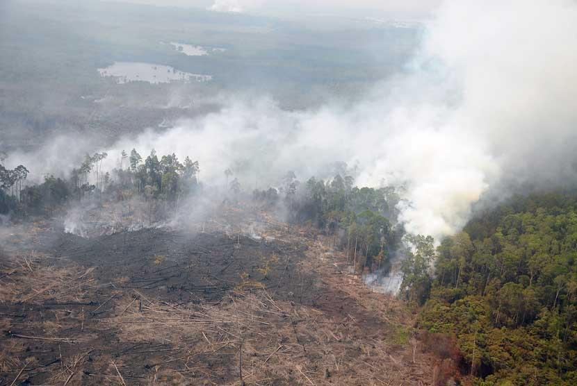 Kepulan asap dari hutan terbakar terlihat di Cagar Biosfer Giam Siak Kecil Kabupaten Bengkalis, Riau, Jumat (28/2).   (Antara/Satgas Bencana Asap Riau)