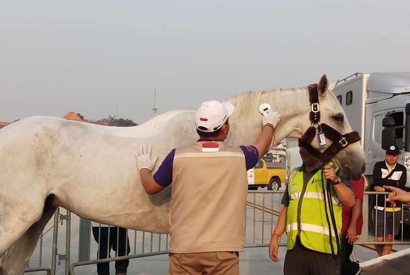 Kloter terakhir, 33 kuda Asian Games 2018 dari Belgia tiba di Bandara Soekarno Hatta, Selasa (21/8)