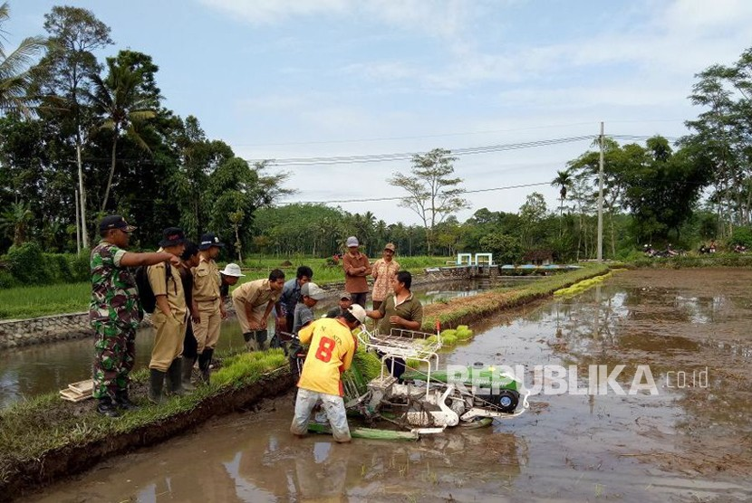 Penyuluh pertanian. (Ilustrasi)