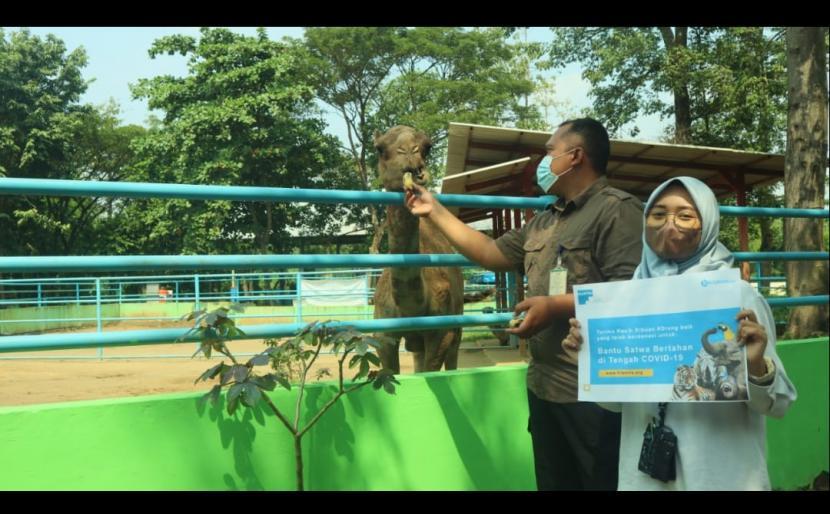 Kondisi sulitnya kebun binatang merawat binatang yang ada menggugah Filantra untuk membantu meringankan manajemen kebun binatang dalam memelihara satwa.