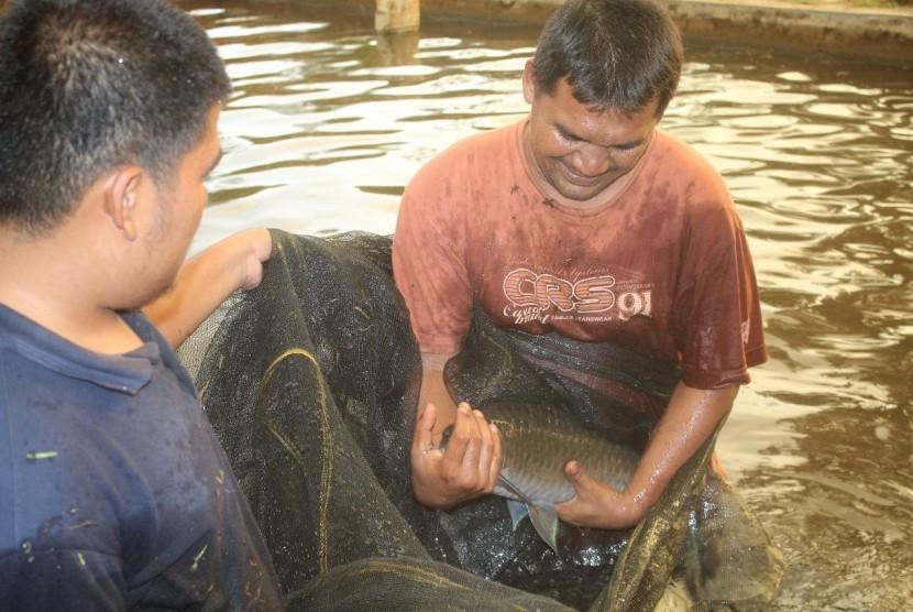 Batak fish conservation by Batangtoru hydropower in South Tapanuli, North Sumatra.