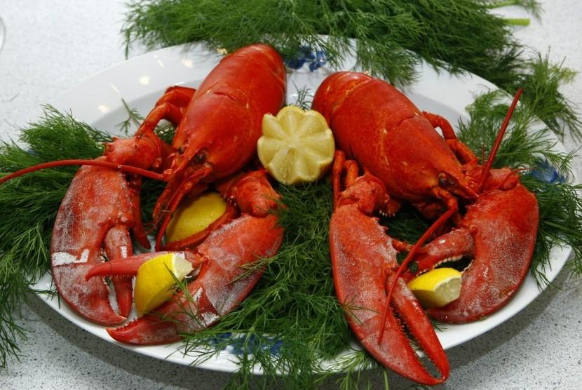 Permintaan Lobster Dari Cina Tinggi Republika Online