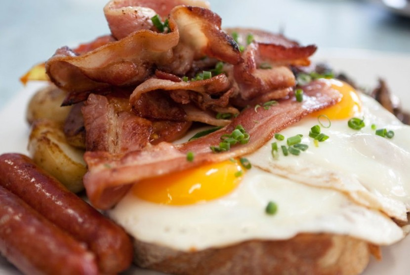 Makanan mengandung protein hewani
