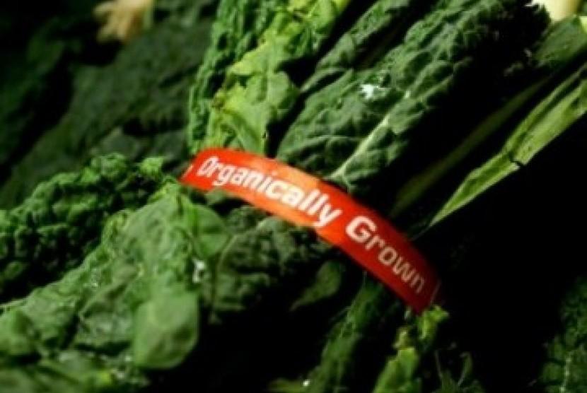 Makanan Organik (Ilustrasi)