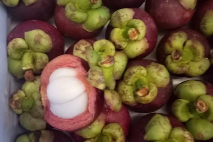 Manggis varietas unggul Wanayasa