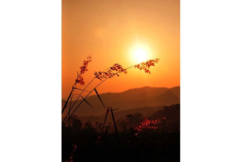 Hasil gambar untuk matahari