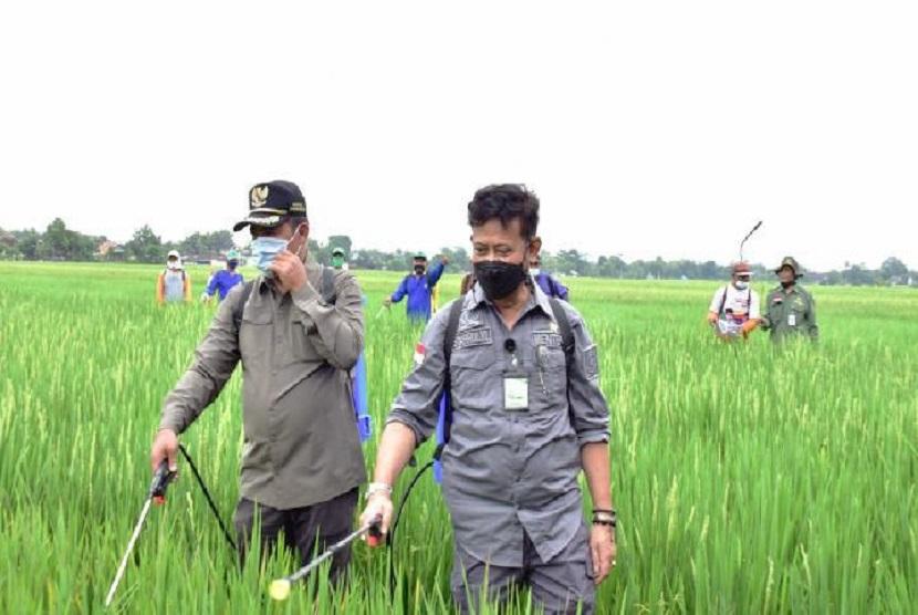 Mentan Syahrul Yasin Limpo (kanan) mendampingi petani melakukan pengendalian hama tanaman padi