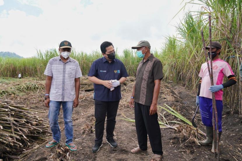 Menteri BUMN Erick Thohir (kedua kiri) meninjau PT Industri Gula Glenmore (IGG) yang dikelola PT Perkebunan Nusantara XII di lahan seluas 102,4 ha di Desa Karang Harjo, Kecamatan Glenmore, Kabupaten Banyuwangi, Sabtu (18/9/2021).