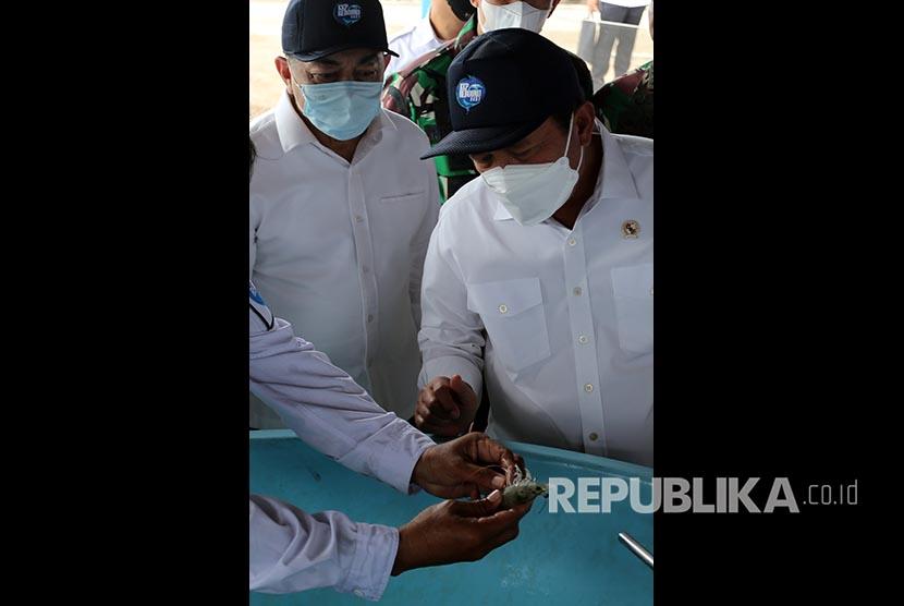 Menteri Kelautan dan Perikanan Sakti Wahyu Trenggono (kanan) meninjau tempat penetasan (hatchery) udang vaname di Balai Perikanan Budidaya Air Payau Ujong Bate, Aceh Besar, Aceh, Rabu (8/9/2021). Budidaya udang vaname berpotensi memenuhi permintaan ekspor sejumlah negara ASEAN, juga dapat dimanfaatkan untuk bahan baku berbagai produk UMKM sebagai upaya mendukung program Gerakan Nasional Bangga Buatan Indonesia (Gernas BBI).