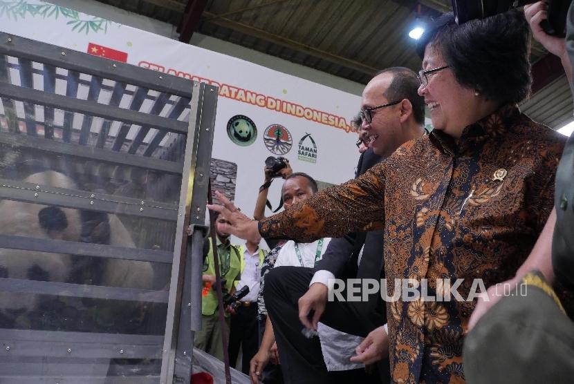 Menteri Lingkungan Hidup dan Kehutanan Republik Indonesia Siti Nurbaya Bakar (kanan) saat prosesi penyambutan sepasang Giant Panda dari Cina yang mendarat di Bandara Soekarno Hatta, Banten, Kamis (28/9).