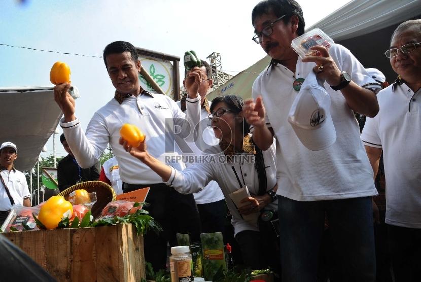 Menteri Pertanian Amran Sulaiman (kiri) menunjukkan cabai hasil produksi lokal saat digelar Bulan Mutu Pertanian 2015 di Jakarta, Ahad (8/11).  (Republika/Tahta Aidilla)