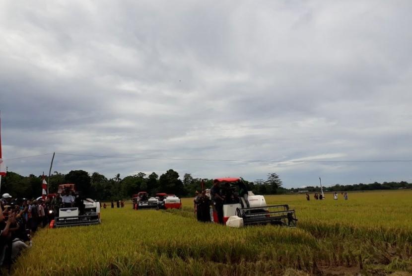 Menteri Pertanian Amran Sulaiman memimpin panen raya seluas 400 hektare di Desa Tanete, Kecamatan Simbang, Kabupaten Maros, Sulawesi Selatan.